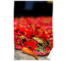 Chinese Chillies Poster