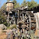 Water Wheel by Gordon  Beck