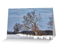 Bale Outs Greeting Card