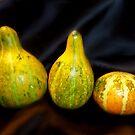 Gourds by WildestArt