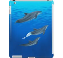 The Clearwater Dolphins iPad Case/Skin