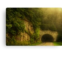 Into The Darkness Canvas Print