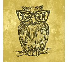 Spectacle Owl Photographic Print