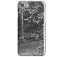 Pathway through the woods iPhone Case/Skin