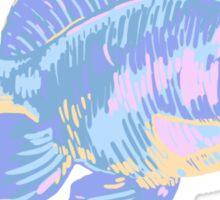 Rainbow Gold Fish  Sticker