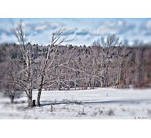 Wide-Open Winter Field Photographic Print