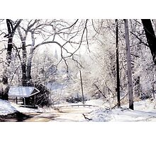 Winter View Photographic Print