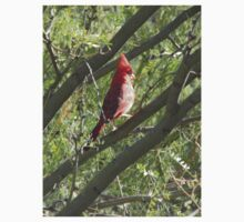 Northern Cardinal in a Tree One Piece - Short Sleeve