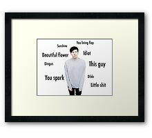 Phil Lester | Dan's nicknames Framed Print