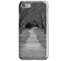 Tree Covered Path iPhone Case/Skin