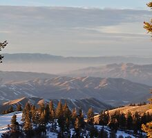 The View From Bogus by CADavis