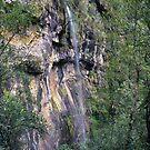 Slender Falls - Victoria's highest single tiered plunge? by Travis Easton