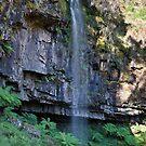 Bindaree Falls by Travis Easton