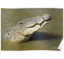 Big Crocodile Profile Photo 3 Poster