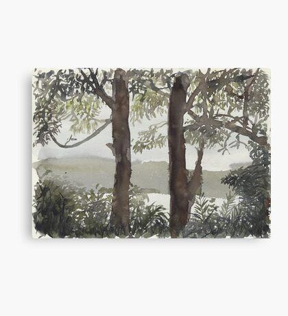 Smith's Lake Trees Canvas Print