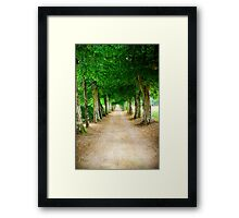Leads You to Overwhelming Question Framed Print