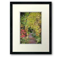 Lair O' The Bear 2 Framed Print