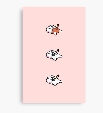 Neko atsume - cake box Canvas Print