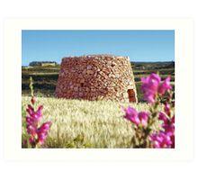stone hut Art Print