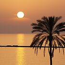 Golden Sunset in Cyprus by Alex Cassels