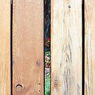 A Peek Through Wood by Cora Wandel