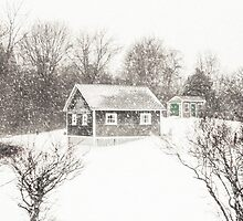 Cape Cod Farm Buried in Snow by Elizabeth Thomas