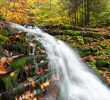 Autumn Foliage and Waterfall at Ricketts Glen State Park Pennsylvania by MarkVanDyke