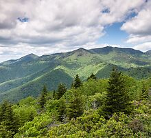 North Carolina Mount Mitchell Blue Ridge Mountain Scenic by MarkVanDyke