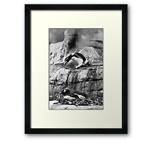 Look out below Framed Print