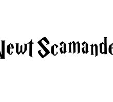Newt Scamander - FANTASTIC BEASTS AND WHERE TO FIND THEM by enduratrum