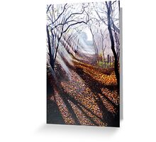 Misty days and sun rays Greeting Card