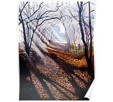 Misty days and sun rays Poster