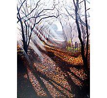 Misty days and sun rays Photographic Print