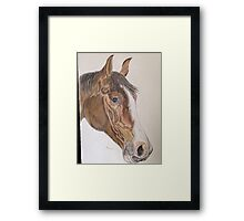 Mistonia coloured pencil Framed Print