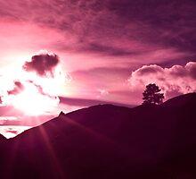 Full Spectrum by Neil Photograph
