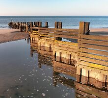 Norfolk groyne by Avril Harris