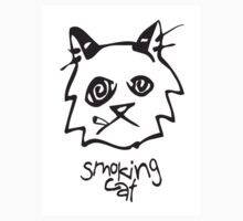 Smoking Cat by Stammrain