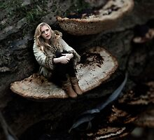 Polypore by Simon Woodward