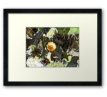 ©MS Lonely Flower IA Framed Print