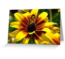 """Butterfly and Flower"" by Carter L. Shepard Greeting Card"