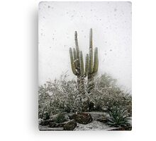 Arizona Snowstorm Canvas Print