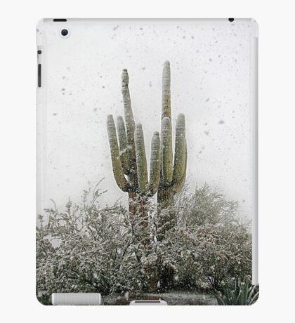 Arizona Snowstorm iPad Case/Skin