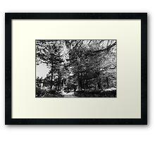 ©MS On The Road IIA Monochromatic Framed Print