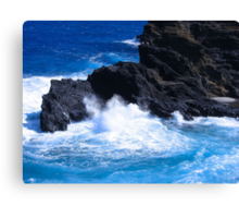 """Hawaii Ocean"" by Carter L. Shepard Canvas Print"