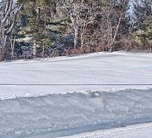 Winter Games by Richard Bean