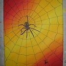 Spider on the Hunt by Derek Trayner