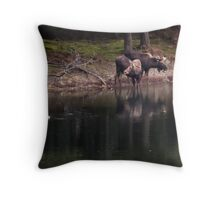 It Was A Strange And Wonderful Relationship Throw Pillow