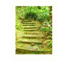 """Manoa Path"" by Carter L. Shepard Art Print"