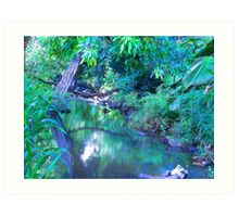 """Manoa Valley Creek"" by Carter L. Shepard Art Print"
