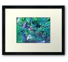 """Manoa Valley Creek"" by Carter L. Shepard Framed Print"
